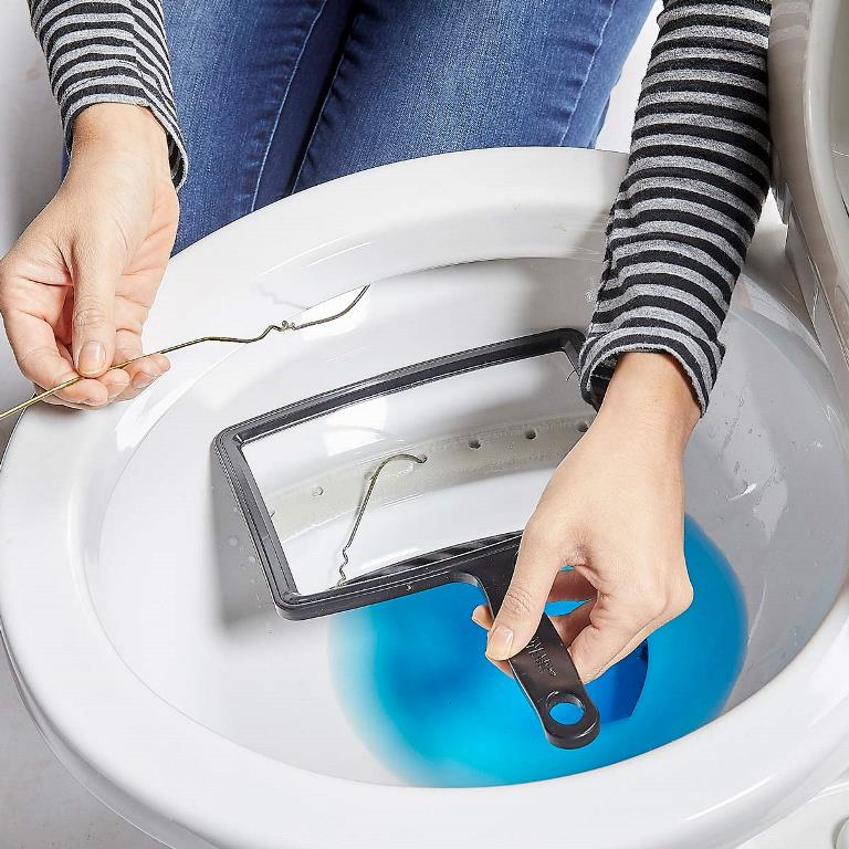 how-can-you-clean-the-rim-jets-on-a-toilet-bowl